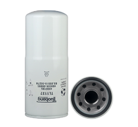 Certified Best Oil Filter 400508-00095 4096195 TL1137